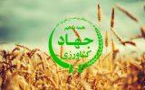 اجرای پروژه مشارکتی توسط بازنشستگان جهاد کشاورزی