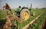 گفتگو با رییس نظام صنفی کشاورزی مهران