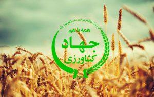 جهاد کشاورزی برای پرداخت پاداش کارکنان ملک میفروشد