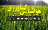 کشاورزان هشدارهای هواشناسی را جدی بگیرند