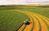 کشاورزانی که ۷۰ هکتار زمین دارند می توانند کشت و صنعت تاسیس کنند / متقاضیان به تعاون روستایی مراجعه کنند + جزییات