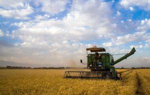 مشکل بیمه تامین اجتماعی کشاورزان را حل کنید / سازمان تامین اجتماعی با بخش کشاورزی همکاری نمی کند