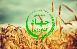 کدهای تعیین وزیر جهاد کشاورزی در دولت بعدی / کدهایی که اگر دقت کنید وزیر آینده را همین امروز بشما می شناساند