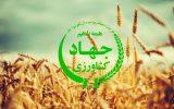 انتصاب در وزارت جهاد کشاورزی / سرپرست معاونت امور زراعت منصوب شد